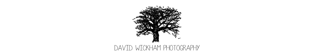 David Wickham logo